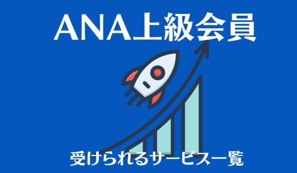 【ANA上級会員】スターアライアンス加盟以外でサービスが受けられる航空会社一覧