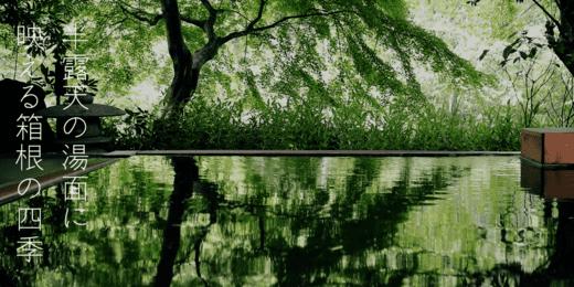 星野リゾート 界箱根宿泊記|半露天の温泉と豪華な夕食の写真満載の旅行記レビュー