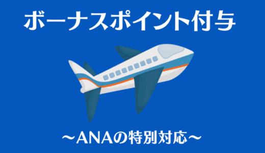 朗報!ANA2021年ボーナスポイントと選べる特典が決定|ステイタスに応じて付与